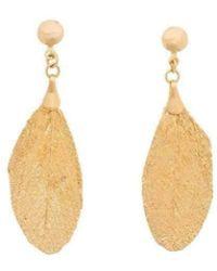 Amazona Secrets 18kt Gold Natural Arabesque Savannah Leaf Earrings nl5iX0