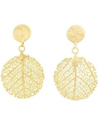Amazona Secrets - 18kt Gold Savannah Leaf Earrings - Lyst