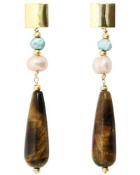 Alison Fern Jewellery 22kt Yellow Gold Fran Drop Earrings With Pearl And Tiger's Eye - Brown