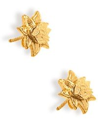 Soul2Seven Yellow Gold Plated Lotus Earrings - Metallic