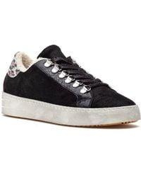 275 Central Moosh Sneaker Black Suede
