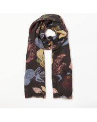 Modern Rarity Bohemian Floral Wool And Silk Scarf - Grey