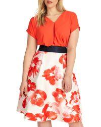 Studio 8 - Sizes 12-26 Belle Skirt - Lyst