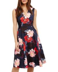 Phase Eight - Elba Fit And Flare Floral Dress - Lyst
