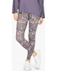 Thought Madelyn Printed Leggings - Blue
