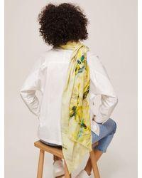 Modern Rarity Palm Tropic Wool And Silk Scarf - Green
