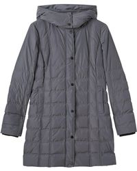 Precis Petite - Amber Quilted Hooded Coat - Lyst