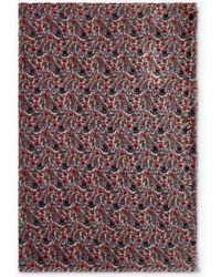Gerard Darel Gipsy Paisley Print Scarf - Multicolour