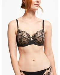 Modern Rarity - Viola Embroidered Non Padded Bra - Lyst