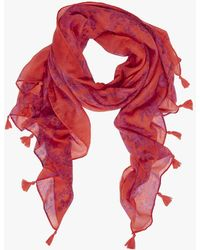 Oasis Blossom Print Scarf - Red