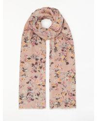 Modern Rarity Mini Floral Confetti Print Scarf - Pink