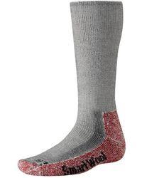 Smartwool - Merino Wool Trekking Extra Heavy Crew Socks - Lyst