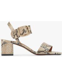 Jigsaw Maer Snake Effect Leather Heeled Sandals - Multicolour