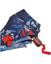 Joules - Brolly Printed Womens Umbrella (x) - Lyst