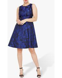 Studio 8 Loren Floral Jacquard Print Dress - Blue