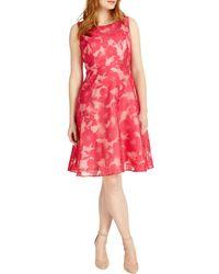 Studio 8 Sizes 12-26 Hot Ellen Dress - Pink