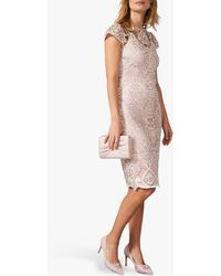 Phase Eight Frances Lace Fitted Dress - Pink