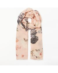Modern Rarity Trade Wings Bloom Wool And Silk Floral Scarf - Pink
