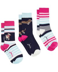 Joules | Brilliant Bamboo Dog Socks | Lyst