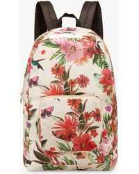 Fiorelli Swift Foldable Backpack - Multicolour