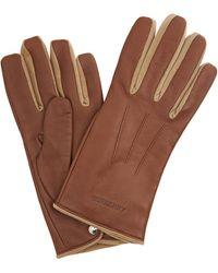 Burberry Brown Nappa Velvet Classic Gloves, Brand