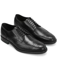 Tod's Mens Black Brogue Shoes