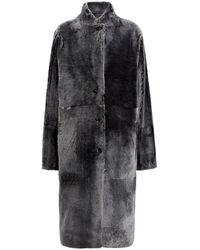 JOSEPH Brittanny Polar Skin Sheepskin - Black