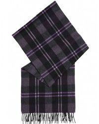 Ascot Accessories - Cashmere Tartan Ascot Scarf - Lyst
