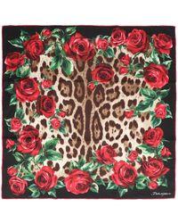 Dolce & Gabbana - Roses Foulard - Lyst