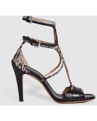 Chloé Gladiator Heels In Exotic Mix - Multicolor