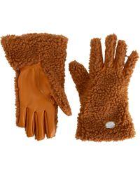 330e2bf41 Stella McCartney Camel Cashmere Gloves