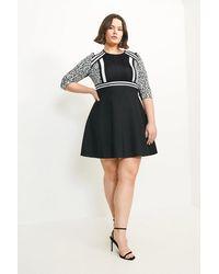 Karen Millen Curve Leopard Fit And Flare Dress - Black