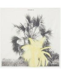 KENZO Bandana 'Hawaian Graffity' 'Capsule High Summer' - Multicolore