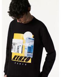 KENZO   Tropical Ice Graphic Sweatshirt   Lyst