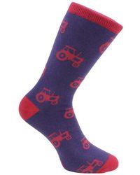 David Van Hagen Tractor Socks - Purple
