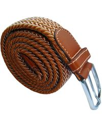 Bassin and Brown Chevron Lined Woven Buckle Belt - Brown