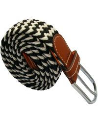 Bassin and Brown Striped Elasticated Woven Buckle Belt - Multicolor