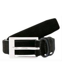 Dents Suede Belt - Black