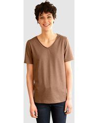 Dress In Shirt - Bruin