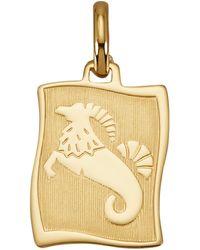 Diemer Gold Hanger Sterrenbeeld Steenbok - Meerkleurig
