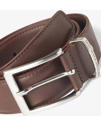 Tom Tailor Klassischer Leder-Gürtel - Braun