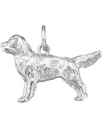 Diemer Gold Hanger Hond - Meerkleurig