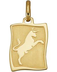 Diemer Gold Hanger Sterrenbeeld Stier - Meerkleurig