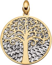 Diemer Gold Hanger Levensboom - Geel