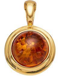 Diemer Farbstein Cliphanger - Oranje