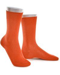 Babista Sokken - Oranje