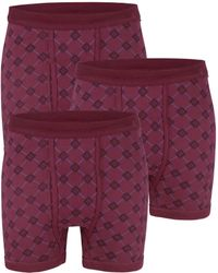 G Gregory Boxershorts - Paars