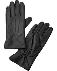Paola Handschoenen - Zwart