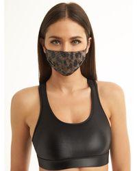 Koral Shiny Netz Face Mask - Brown