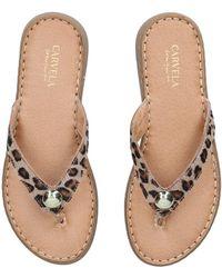 Carvela Kurt Geiger Leopard Print Toe Post Sandals - Black